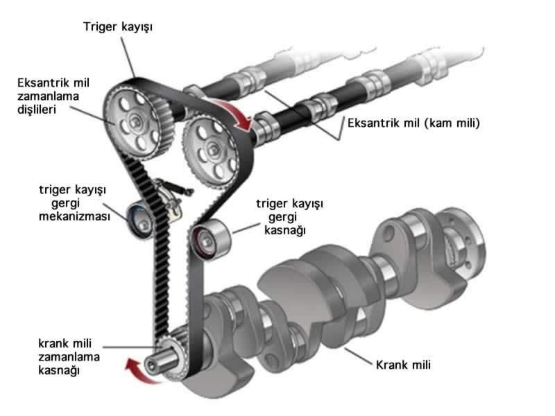 triger kayışı ne işe yarar