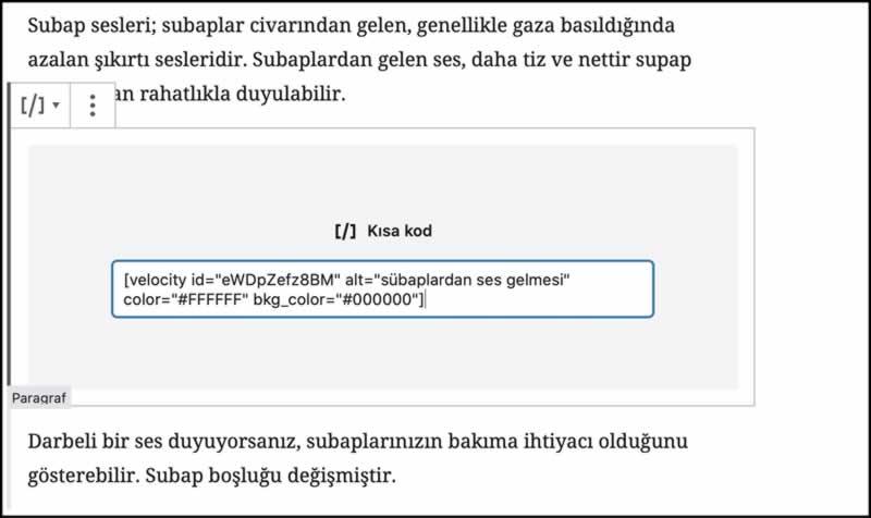 wordpress pagespeed insight değerlerini artırma eklentisi
